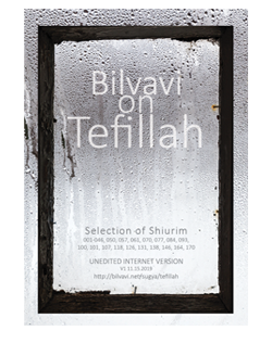 Bilvavi on Tefillah Selection
